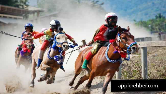 Trick Horse Racing Online Gambling Game